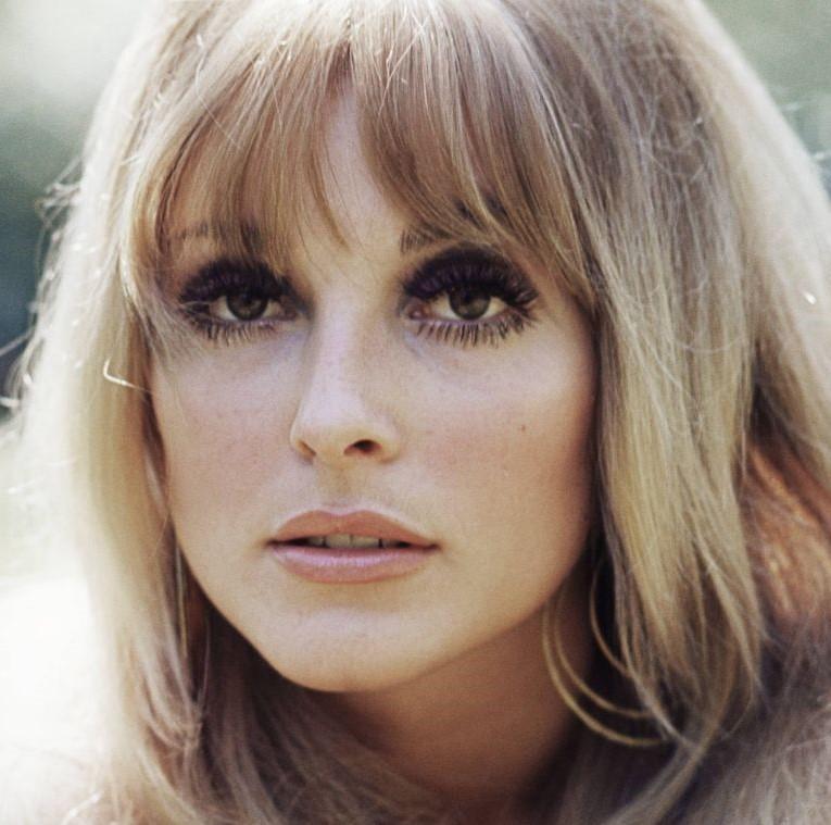 001 sharon-tate-us-actress-circa-1965-news-photo-139630079-1563992552